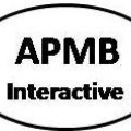 Go to the profile of APMB Interactive