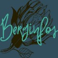 Go to the profile of Berginfos