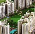 OSB Expressway Towers Sector 109 Gurgaon | 9650813405