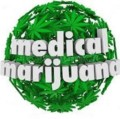 Go to the profile of Medical Cana Store- The Worst Weed Dealer Ever