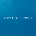Go to the profile of Ocean as common