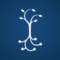 Go to the profile of Carnegie Foundation