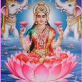 Go to the profile of Lakshmi Rode