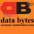 Go to the profile of Data Bytes