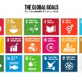 SDG resources