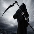Go to the profile of TV Grim Reaper