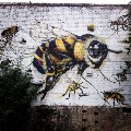 Words and Bees