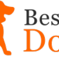 Go to the profile of Best Of Dogs