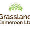 Go to the profile of Grassland Cameroon LTD