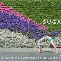 Go to the profile of Sugar Lee