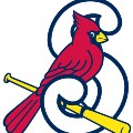 Go to the profile of Springfield Cardinals