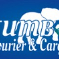 Go to the profile of Jumbo Courier