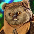 Go to the profile of ewoks