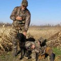 Go to the profile of guided duck hunting