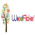 Go to the profile of Wood Flicker