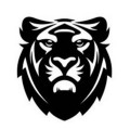 Go to the profile of Tron Folio and Tiger