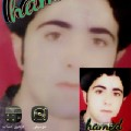 Go to the profile of Hamed Saberian