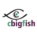 Go to the profile of Cbigfish E-Solutions