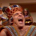 Go to the profile of King Tut