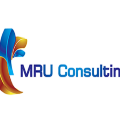 Go to the profile of MRU Consulting