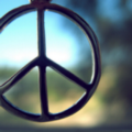 Go to Peace News | #TripForPeace | A Peace Journalism Adventure