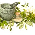 Go to the profile of Natural Healthy Herbs