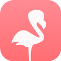 Go to the profile of 英会話ブログ with Flamingo