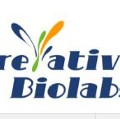 Go to the profile of Creative Biolabs