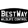 Go to the profile of BestWay Wildlife