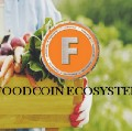 Go to the profile of FoodCoin Ecosystem