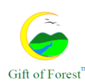 Go to the profile of GiftofForest