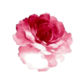 Go to the profile of Floral Garden