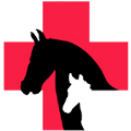 Go to the profile of Equinesafety Zone