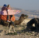 "Morocco ""Surfari"" with Boom Boom the camel"