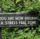Stress, Startups and Survival
