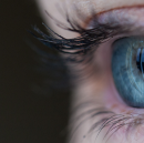 How Your Brain Decides What You're Seeing