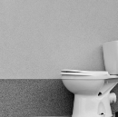 How to Meet the Rich, Famous, and Powerful While Sitting on the Toilet