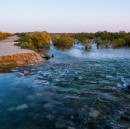 Qatar teen sets out to protect 'magical' mangroves