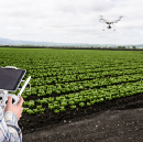 Identifying Crop Variability with Drones