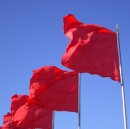 What You Disregard, You Accept: Red Flags for CEOs