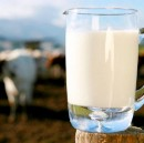 """A New Startup Wants to Make Your Milk """"Perfect"""""""