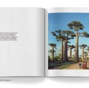 Blurb's Top Tips For Building a Photo Book Masterpiece