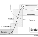 A Structure for Continuous Innovation: Pioneers, Settlers, Town Planners