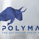 Informational Report on Polymath