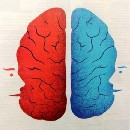 Two Minds in One Brain — The Curious Case of Corpus Callosotomy
