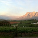 The wine country of South Africa.