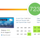 What is in your credit report?