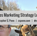 What does marketing strategy look like?
