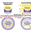 What, exactly is insulin resistance?