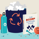 The B Corp Life Cycle